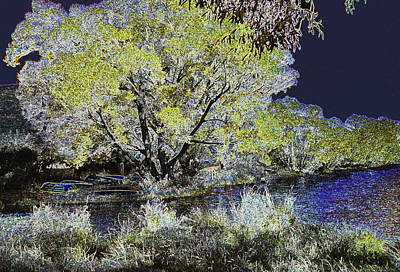 Photograph - Willows By The Lake by Nareeta Martin