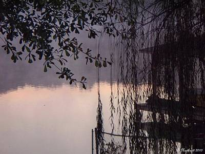 Art Print featuring the photograph Willow's Dawn by Betty Northcutt