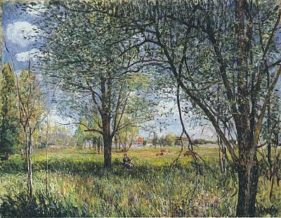 Afternoon Garden Painting - Willows In A Field by MotionAge Designs