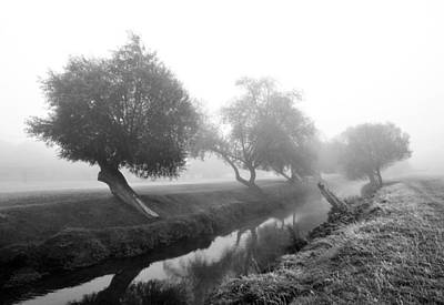 Photograph - Willows In Fog by Marek Stepan