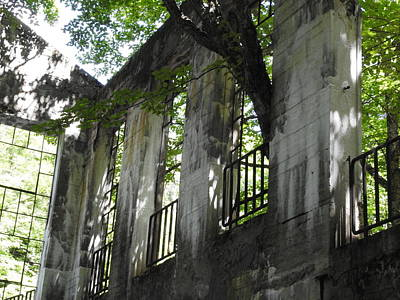 Photograph - Willson's Mill Ruins by Betty-Anne McDonald
