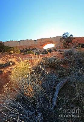 Photograph - Wilson Arch II by Mary Haber