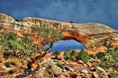 Photograph - Wilson Arch - Utah Natural Landscape by Gregory Ballos