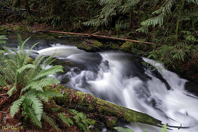 Photograph - Wilson Creek #18 by Ben Upham III