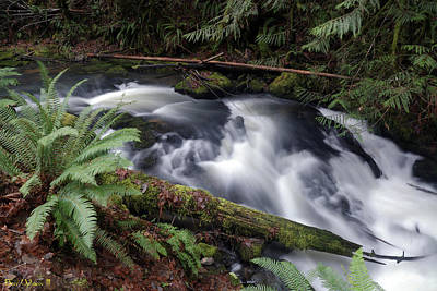 Photograph - Wilson Creek #19 by Ben Upham III