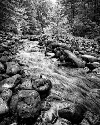 Photograph - Wilson Creek 2 by Alan Raasch