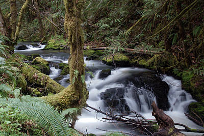 Photograph - Wilson Creek #25 by Ben Upham III