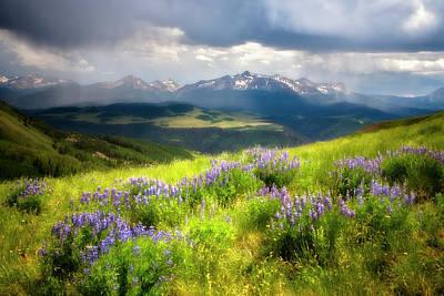 Photograph - Wilson Peak by Whit Richardson