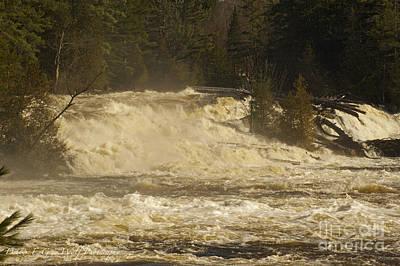 Photograph - Wilsons Falls by Elaine Mikkelstrup