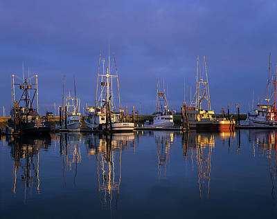 Photograph - Winchester Bay Reflections by Robert Potts
