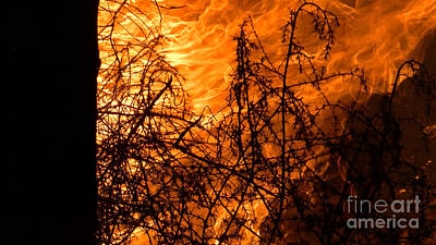 Photograph - Wind And Fire by Chris Tarpening