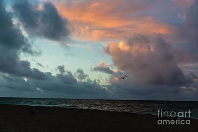 Photograph - Wind Beneath My Wings by Jon Burch Photography
