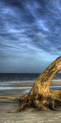 Jekyll Island Photograph - Wind Bent Driftwood Left 1 Of 3 by Greg Mimbs