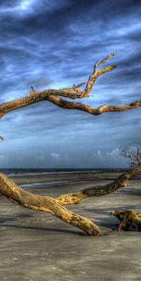 Jekyll Island Photograph - Wind Bent Driftwood Right 3 Of 3 by Greg Mimbs