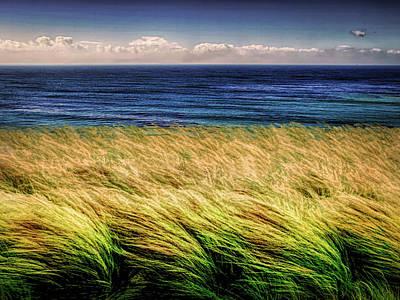 Photograph - Wind Blown by Joseph Hollingsworth