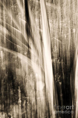 Abstract Movement Photograph - Wind by Emilio Lovisa