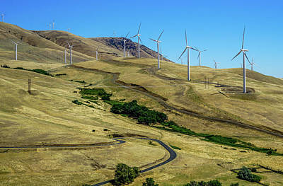 Sunny Photograph - Wind Farm by Ric Schafer