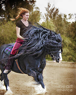 Photograph - Wind In My Mane by Jerry Cowart