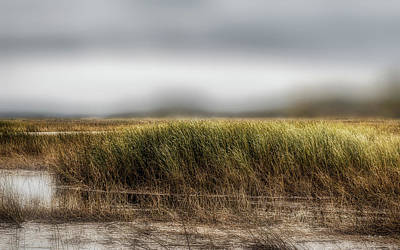 Photograph - Wind In The Saltmarsh by Bob Orsillo