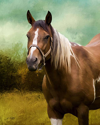 Photograph - Wind Of Heaven - Horse Art by Jordan Blackstone