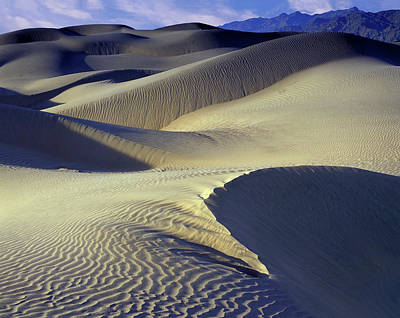 Photograph - Wind Sculpted Dunes by John Farley