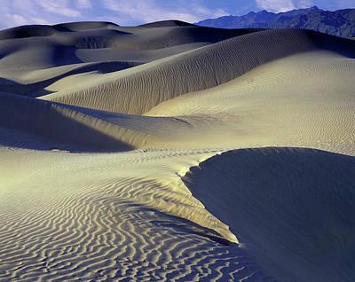 Photograph - Wind Sculpted Dunes by John Farley