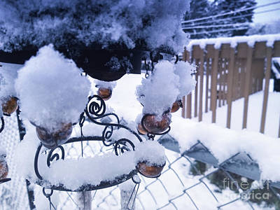 Photograph - Wind Snow Chimes by Robert Knight
