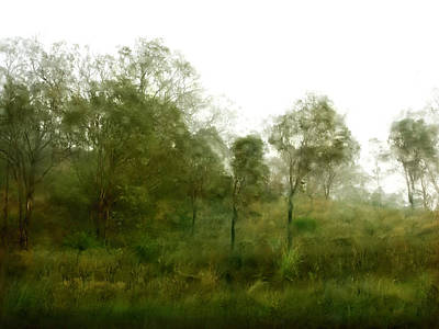Photograph - Wind Storm by Linde Townsend