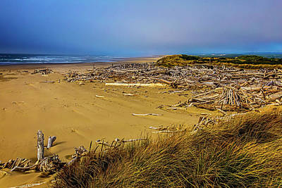 Weatherworn Photograph - Wind Swept Beach by Garry Gay