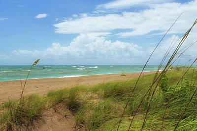 Photograph - Wind Swept Beach by John M Bailey