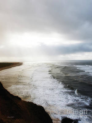Photograph - Wind Swept Coast by Shari Nees