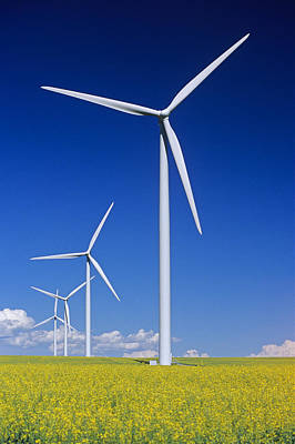 Photograph - Wind Turbines In Canola Field, Near St by Dave Reede