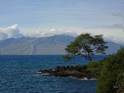 Photograph - Wind Turbines - Maui by Paulette B Wright