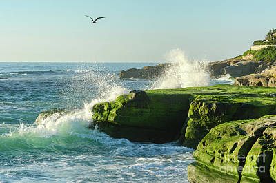 Photograph - Windansea Coast by Mike Ste Marie