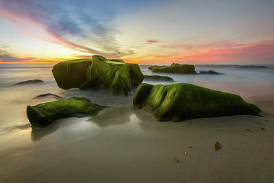 Photograph - Windansea - Green Moss Rocks by Alexander Kunz