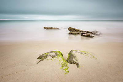 Photograph - Windansea - Surfacing by Alexander Kunz