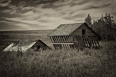Photograph - Windblown Barns - 365-113 by Inge Riis McDonald