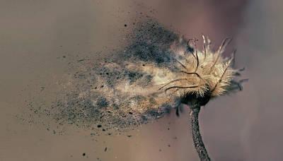 Digital Art -  Impermanent by Jos Verhoeven