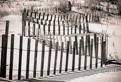 Photograph - Winding Beach Fences In Sepia by Colleen Kammerer