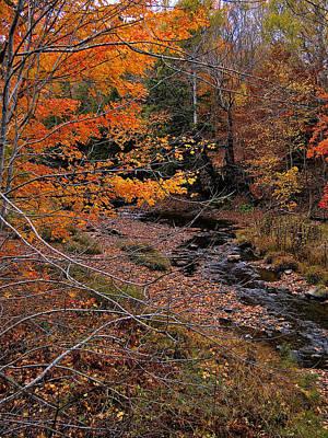 Colorful Painting - Winding Brook by Kathleen Sartoris
