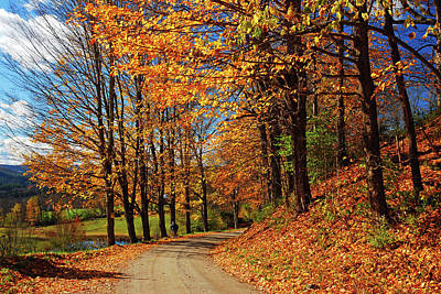 Photograph - Winding Country Road In Autumn by James Kirkikis
