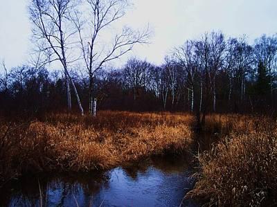 Winding Creek 2 Print by Anna Villarreal Garbis