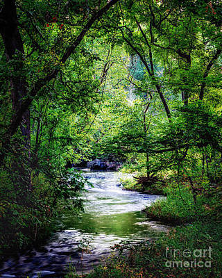 Photograph - Winding Creek At Chickasaw National Recreation Area In Vertical by Tamyra Ayles