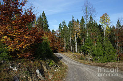 Photograph - Winding Gravel Road At Fall by Kennerth and Birgitta Kullman