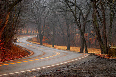 Winding Misty Road Art Print by Don Wolf