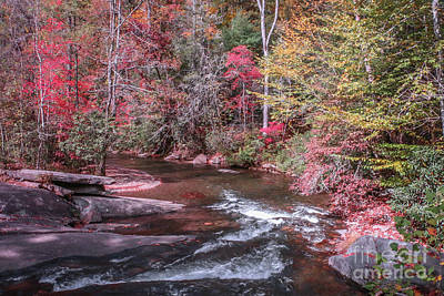 Photograph - Winding Mountain Stream by Tom Claud
