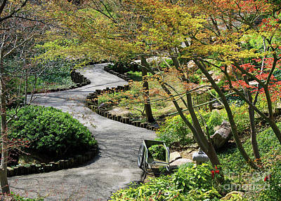 Photograph - Winding Path by Inspirational Photo Creations Audrey Taylor