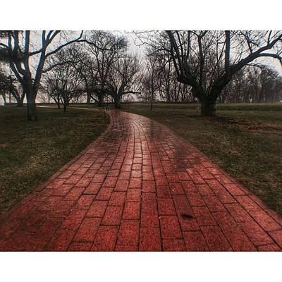 Pathway Photograph - Winding Pathway  #path #pathway by Blake Butler