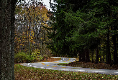 Photograph - Winding Road by Ron Pate