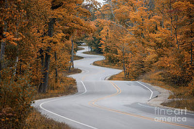 Winding Road Art Print by Timothy Johnson